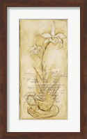 Afternoon Orchids II Fine Art Print
