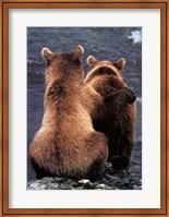 Two Bear Cubs Fine Art Print