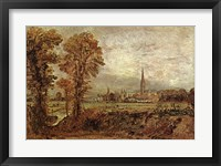 Salisbury Cathedral from the Meadow Fine Art Print