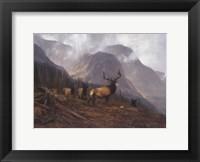 Bookcliffs Elk Fine Art Print