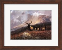 Bookcliffs Elk I I Fine Art Print
