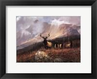 Bookcliffs Elk I I Fine Art Print