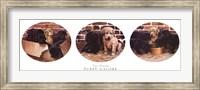 Puppy Galore Fine Art Print