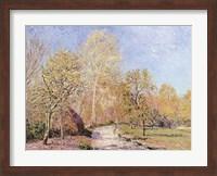 Autumn Landscape Fine Art Print