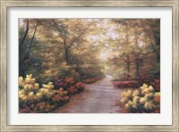 September Song Fine Art Print
