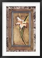 Day Lily I Fine Art Print