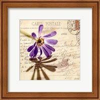 Vintage Letter and Purple Daisy Fine Art Print