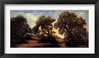 Shadows and Trees Fine Art Print