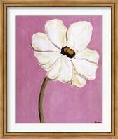 White Cosmos On Pink Fine Art Print