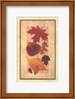 Autumn Harvest II Fine Art Print