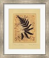 Fern Garden Fine Art Print