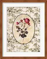 Toile Rose I Fine Art Print