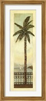 Cayman Palm II Fine Art Print