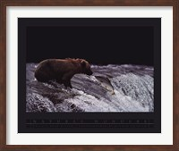 Grizzly Bear and Fish Fine Art Print