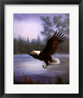 Eagle Fishing Fine Art Print