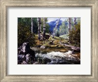 Rocky Mountain Deer Fine Art Print