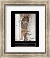 Wisdom - Gray Wolf Fine Art Print