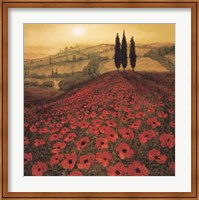 Poppy Field Fine Art Print