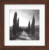 Mensano, Tuscany Fine Art Print