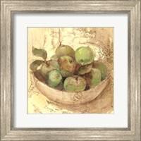 Sunlit Apples Fine Art Print