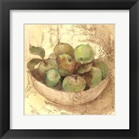 Sunlit Apples Fine Art Print
