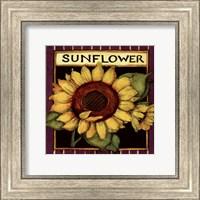 Sunflower Seed Packet Fine Art Print