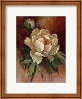 White Peonies II Fine Art Print