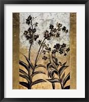 Orchid Silhouette Fine Art Print