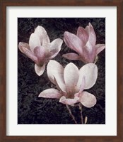 Pink Magnolias II Fine Art Print
