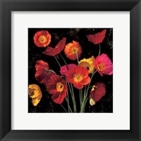 Poppy Bouquet II Fine Art Print