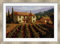 Tuscan Vineyard Fine Art Print