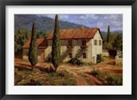 Tuscan Cypress Fine Art Print