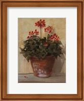 Potted Geraniums I Fine Art Print
