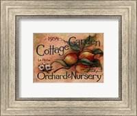 Cottage Garden IV Fine Art Print