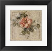 Provence Rose II Fine Art Print