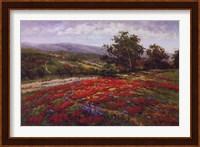 Campo Di Fiore II Fine Art Print