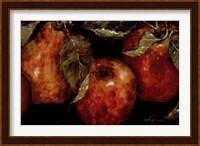 Summer Fruit Fine Art Print