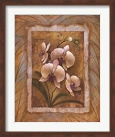 Illuminated Orchid II Fine Art Print