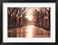 Rainy Day - Central Park Fine Art Print