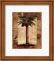 Classic Palm I Fine Art Print