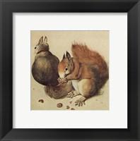 Squirrels, c.1512 Fine Art Print