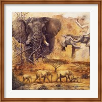Safari II Fine Art Print