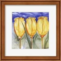 3 Yellow Tulips Fine Art Print