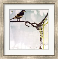 Early Bird Fine Art Print