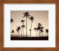 Platinum Palms II Fine Art Print