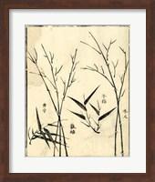 Bamboo Woodblock II Giclee