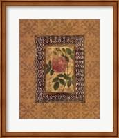 Rose Illumination II Fine Art Print