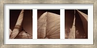 Windward Sails Triptych Fine Art Print