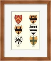 Coat of Arms II Fine Art Print