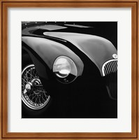 Jaguar C-Type Fine Art Print